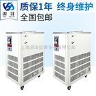 DLSB-10L/-20℃DLSB冷却水循环泵