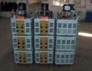 TESGC2型系列三相电动调压器