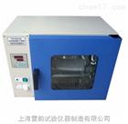 厂家直销(上海雷韵)DHG-9023A干燥箱可定时型