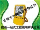 ZL8901 丰绅 防爆强光节能泛光工作灯