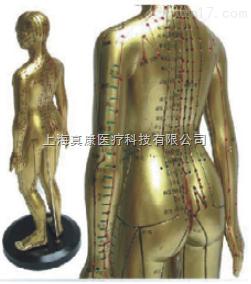 女性人体针灸模型(PVC玻璃钢材质)