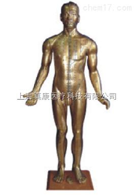 半皮肤铜色人体针灸模型(pvc玻璃钢材质)