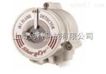 三重红外火焰探测器 SharpEyeTM40/40I