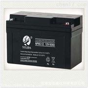 LIBOTEK阀控密封式蓄电池NP65-12 12V65AH联保三年