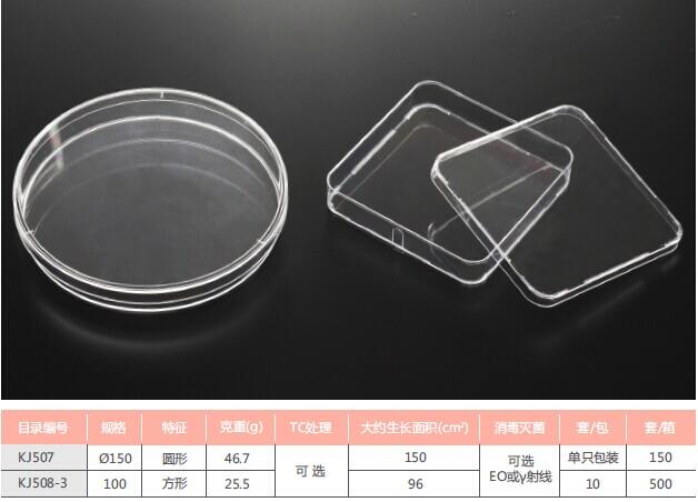 细胞细菌培养皿