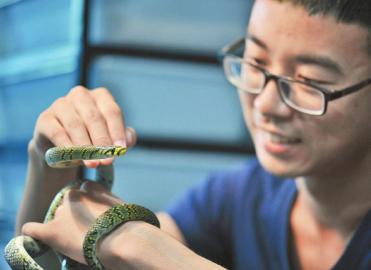 zui美小蛇