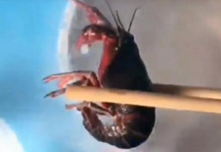 被冻僵的小龙虾