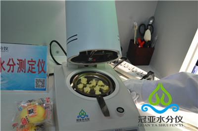 鱼糜水分检测仪