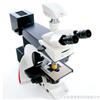Leica 生物冠亚娱乐平台徕卡DM2500研究级生物冠亚娱乐平台