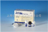 兔基质金属蛋白酶1(MMP-1)ELISA试剂盒