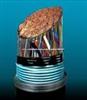 屏蔽铠装阻燃控制软电缆ZR-KVVRP22