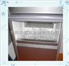 IM-100中小型雪花制冰机厂家