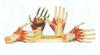GD/A11306手掌解剖模型