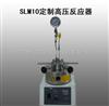 上海团购SLM10定制高压反应器