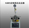 河南SLM25定制高压反应器