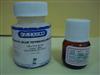 4-(N-乙基-N-氨基丁基氨基)邻苯二甲酰肼