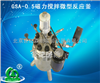 厂家直销GSA-0.5磁力搅拌微型反应釜