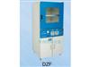 DZF-6090Z立式真空干燥箱