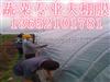 天津低价地膜。大棚膜。天津农业地膜批发