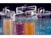 UT305厌氧培养罐
