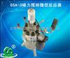 GSA-3磁力搅拌微型反应器大连生产