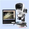 L2显微镜 体视显微镜 VISION LNYX L2 显微镜