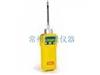 PGM-7840美国华瑞RAE复合气体检测仪