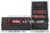 XSF-2000型智能流量积算仪