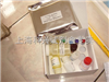 大鼠基质金属蛋白酶抑制因子1ELISA试剂盒