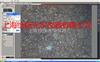 热台高温热台-上海绘统光学仪器有限公司