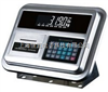 XK3190-A12E雷竞技官网仪表