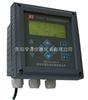 YL5601现货供应中文在线余氯分析仪YL5601