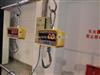 宁波1吨电子吊秤,高精度直视电子吊磅秤