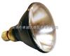SB-100P紫外线灯灯泡/BLE-100S/M