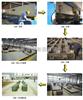 SCS 40吨数字式地磅厂,40吨数字式地磅厂