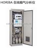 日本堀场 在线烟气分析仪ENDA-600ZG系列