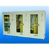 YXPT-型安全工具柜