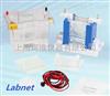 美国Labnet垂直电泳系统E2010-PA/E2010-PCA/E2010-BM