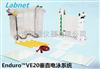 美国Labnet Enduro VE20垂直电泳系统E2020-CU/E2020