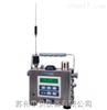 AreaRAE Gamma 区域气体及射线复合式监测仪【PGM-5520】