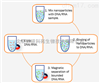 K61001-EasyMagVigen™ DNA/RNA—用于DNA/RNA纯化的磁性纳米颗粒(Magnetic Nano