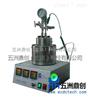 WZC-500鼎创北京直供 WZC实验室不锈钢磁力反应釜