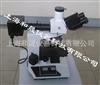 炭黑分散度检测仪